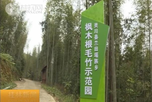 灵川兰田乡:走环境保护与产业协调发展之路