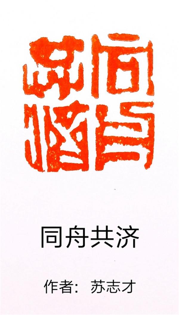 作者:苏志才