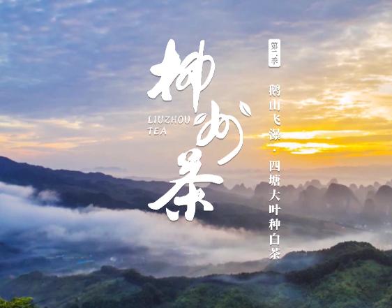 柳州茶系列作品05