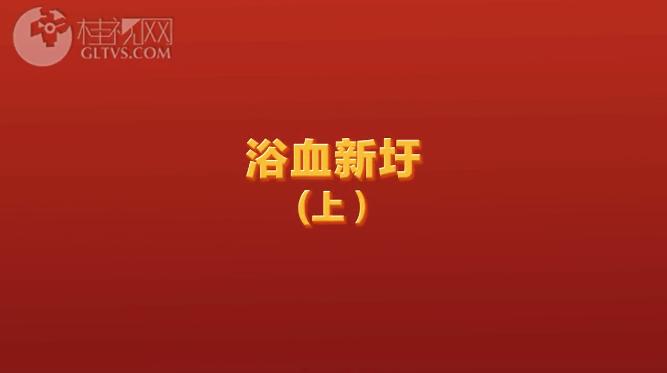 浴血新圩(上)