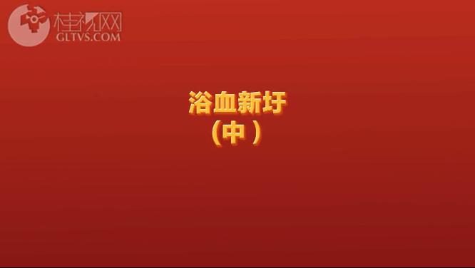 浴血新圩(中)