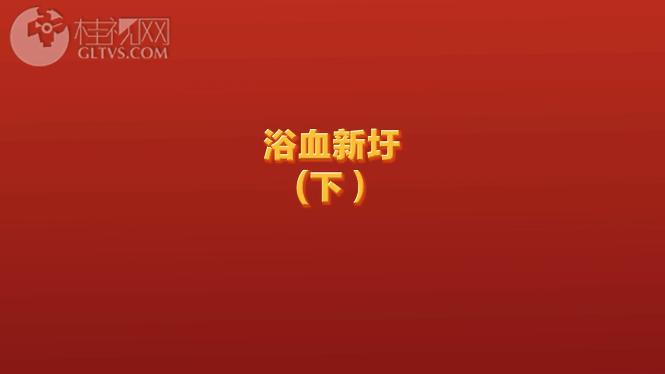 浴血新圩(下)