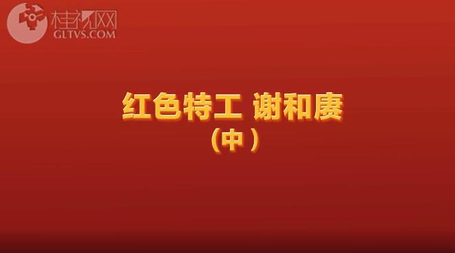 红色特工谢和赓(中)