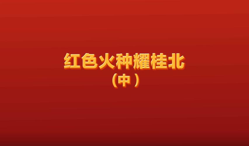 红色火种耀桂北(中)