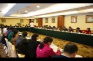 周家斌参加临桂团分团审议:以项目建设推动新区发展