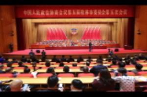 政协第五届桂林市委员会第五次会议进行大会选举  补选陈丽华为政协桂林市第五届委员会主席