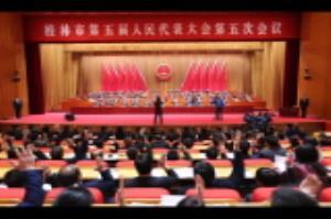 市五届人大五次会议举行大会选举  补选张晓武为市五届人大常委会主任