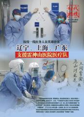 辽宁上海广东支援雷神山医院医疗队修改